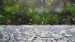blog-rain-or-shine