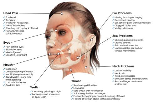 Diagram explaining different pain sources