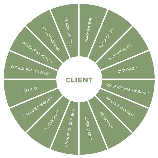 Wheel of practitioners