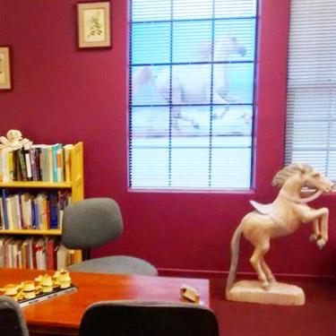 Consultation room at Sullivan Chiropractic