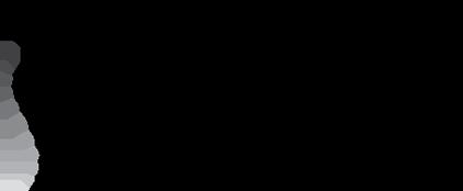 Essential Chiropractic Inc logo - Home