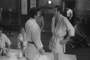 Judo Joe