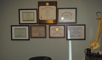 Dr. Shakib of Irvine Spine & Wellness Center Credentials