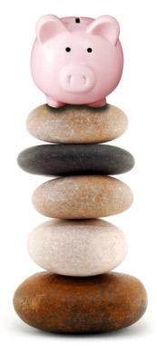Pig on stones