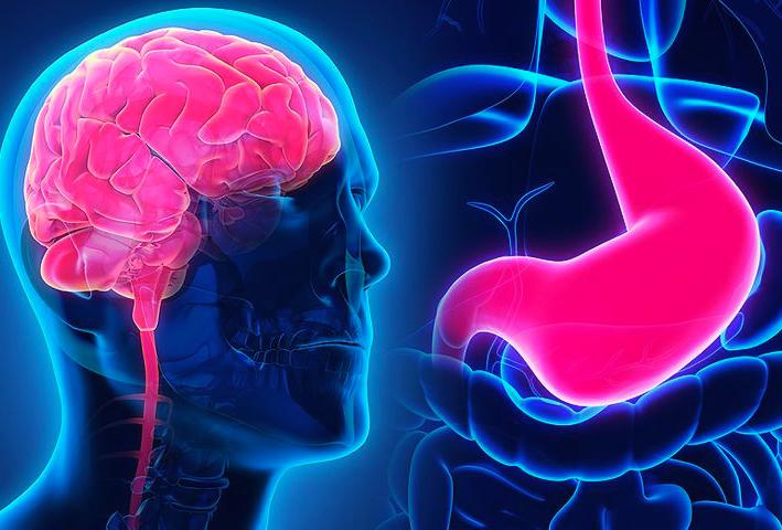 gut-health-anxiety