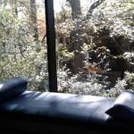 Our Zen Den