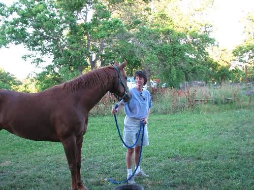 Dr. Darla, Chiropractor Oak Forest/ Garden Oaks, with a horse