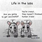Lab Mice on Vaccines