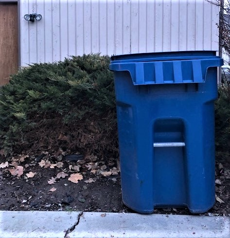 no trash can