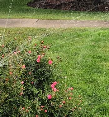 sprinklers-and-rain-02