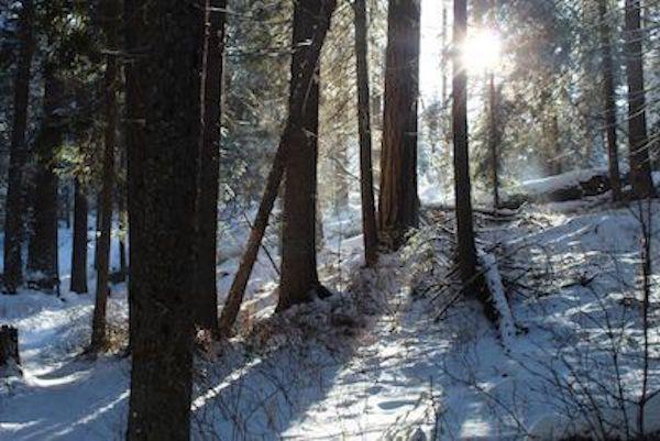 Ken Swaim - Ponderosa State Park, - 11-29-20