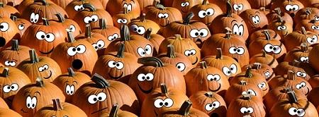 pumpkins-facts-03