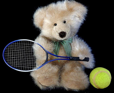 tddy-bear