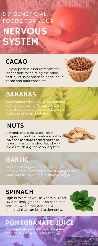 Best foods for nervous system
