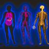 Nervous System Thumbnail Image
