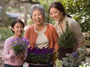 Three women planting flowers