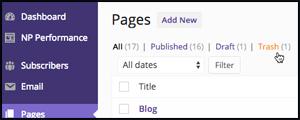 page-delete-300
