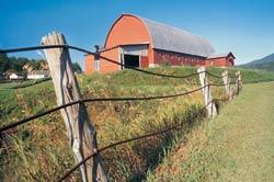 farming image