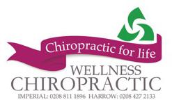 wellnesschirologo-247